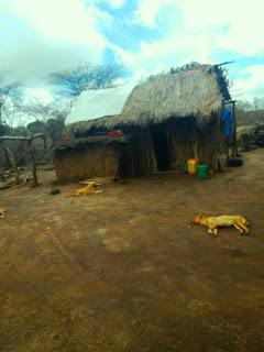 Gombero, Tanzania