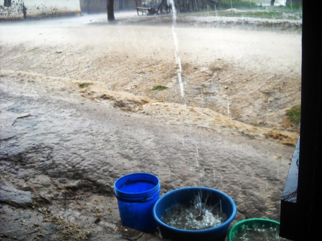 La forte pioggia in savana