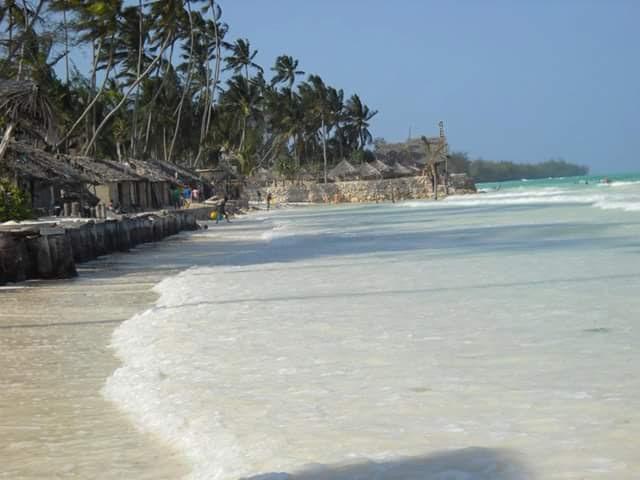 Una delle spiagge di Zanzibar