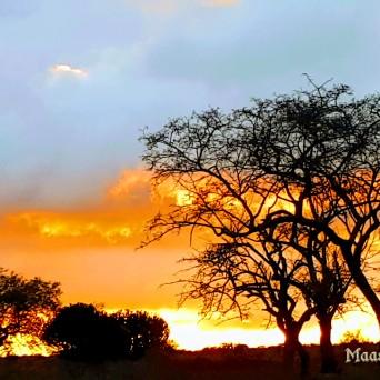 TRAMONTO IN TANZANIA